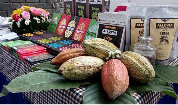 Tác dụng của bơ cacao trở thành vấn đề hot trên nhiều diễn đàn, mạng xã hội