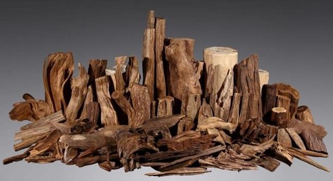 Trầm hương được xem là một trong những loại dược liệu quý nhất hiện nay