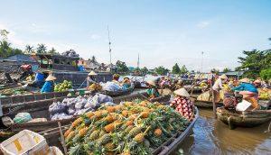 things to buy mekong delta